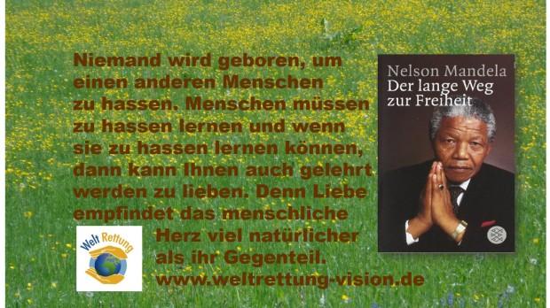 Bild-Text Mandela Zitat